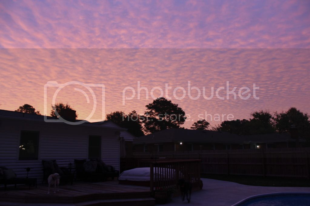 Sunrise from my backyard - Virginia Beach - October 2012